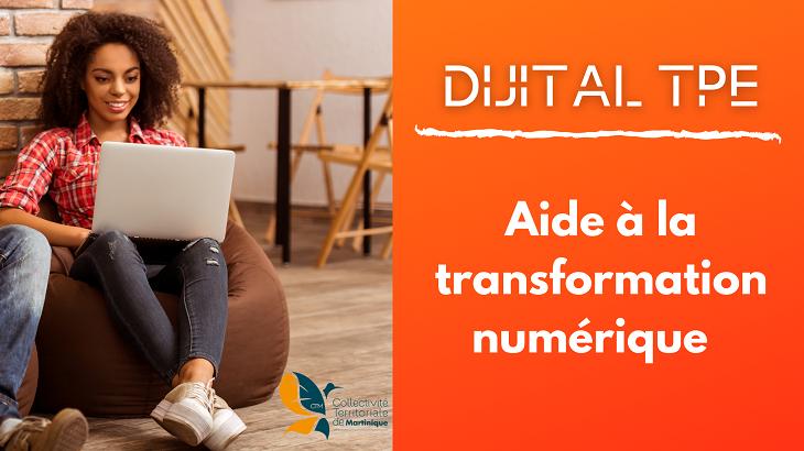 Aide-a-la-transformation-numerique-digital-tpe-lios-graphics-arts-agence-marketig-communnication-martinique